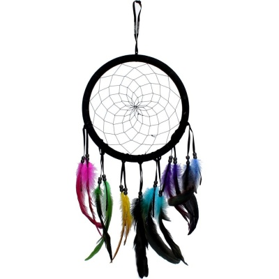 Vivid Dreams Dreamcatcher